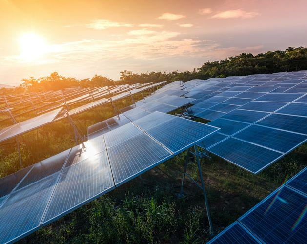sustainability goals